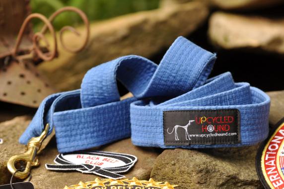 Blue Karate Belt Leash