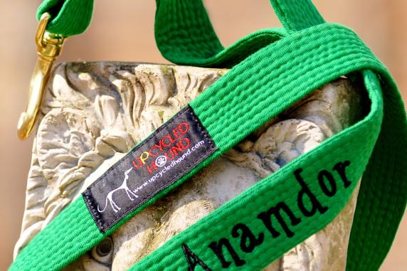 Double Handle Example Green