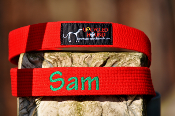 Karate Belt Leash with embroidery