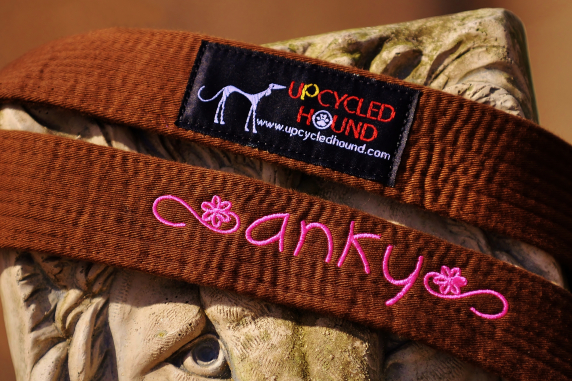 Brown Karate Belt Leash