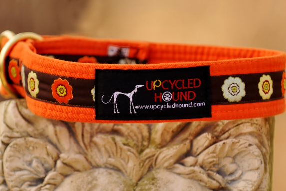 Karate Belt Collar with ribbon