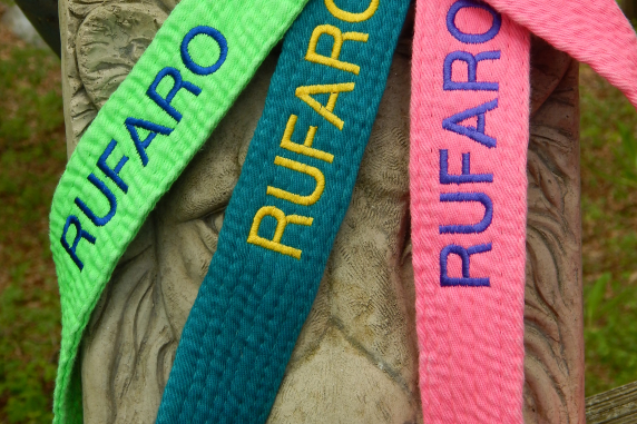 Karate Belt Leash Colors Lime, Teal and Hot Pink