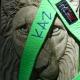 Lime Green Karate Belt Leash