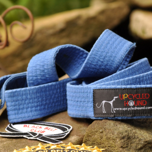 Blue Karate Belt Leash