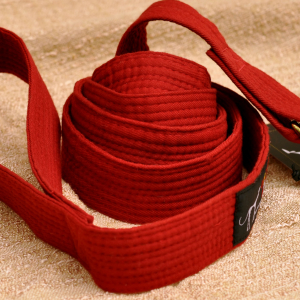 Karate Arts Belt Leash