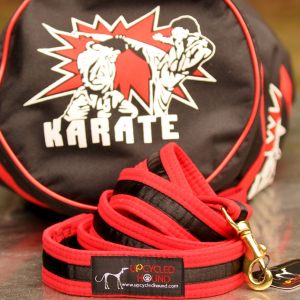 Karate Belt Leash